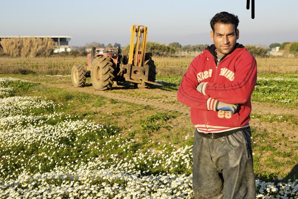 imigrant w pracy na polu w tle stoi traktor